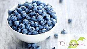 blauwe-bessen-gezond (1)