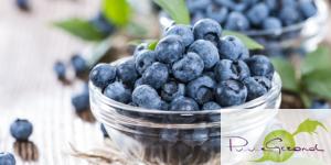 blauwe-bessen-gezond