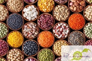 o-lentils-and-legumes-facebook-1024x682